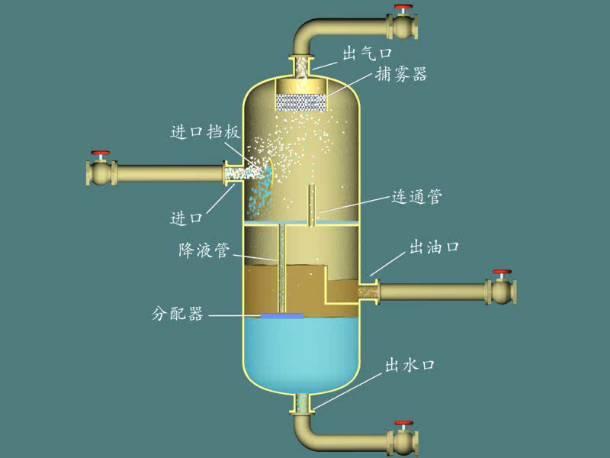 皮肤水油结构图