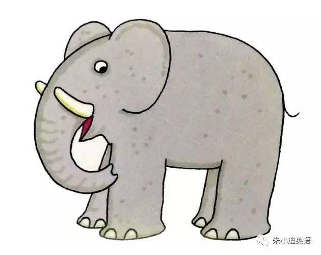 动物园的英文_动物园英文手抄报剧情介绍