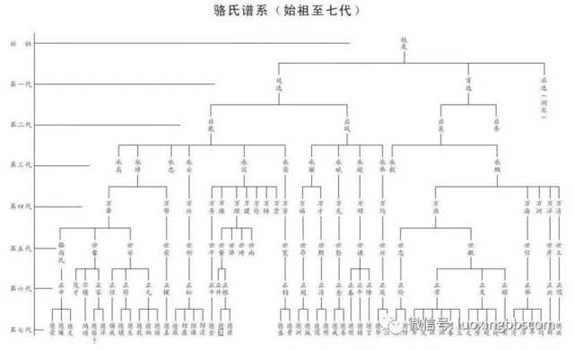 双流骆氏桂友公家族重修族谱序图片