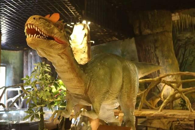 恐龙归来!来西霞口神雕山野生动物园逛侏罗纪公园!