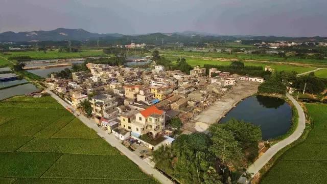 泗阳薛嘴村风景