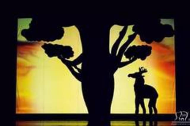 2011年以富有创意的影子舞作品参与乌克兰达人秀一举成名,并荣获当年