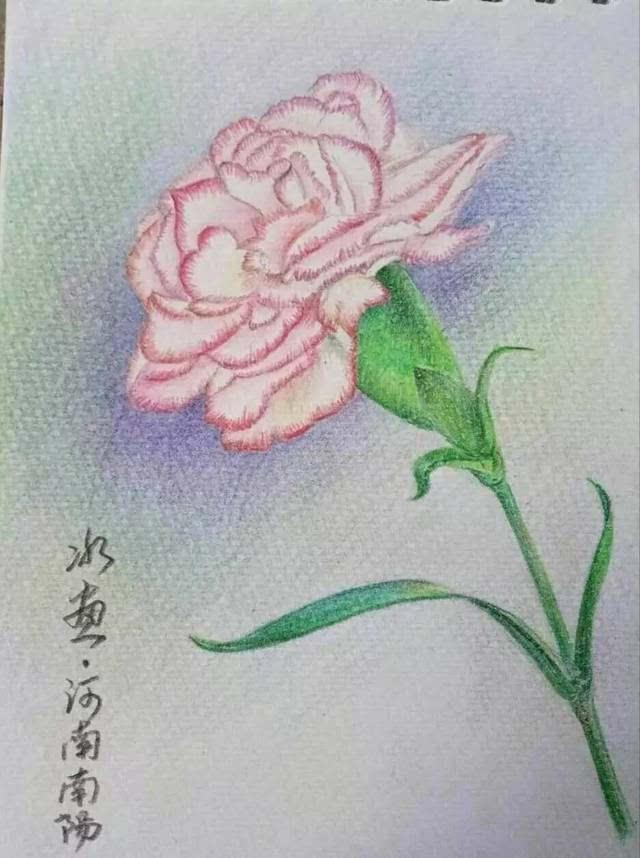 母亲节《手绘康乃馨》活动,投票进行中.