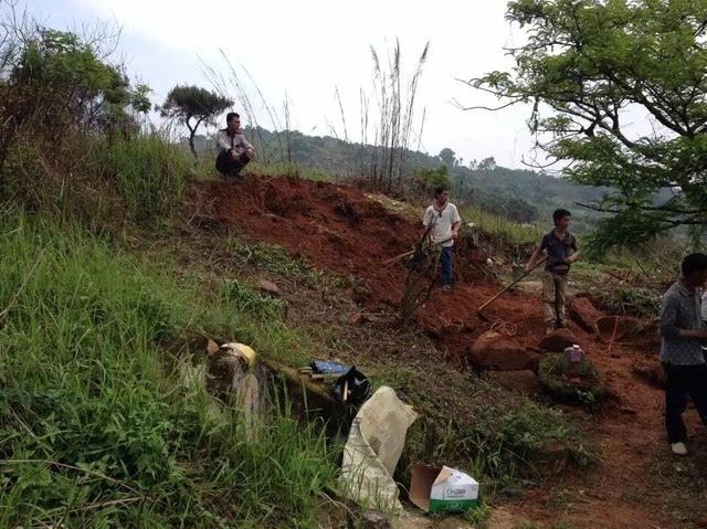 洋人插穴图_一些管理山场林场的不良人员为为一己私利,昧良心插穴占葬,毁旧穴造新