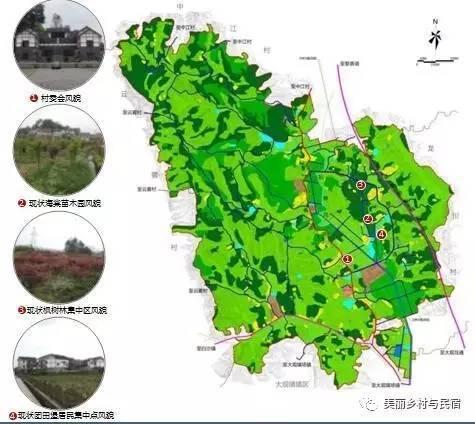 案例分析-重庆市南川区大观镇金龙村规划
