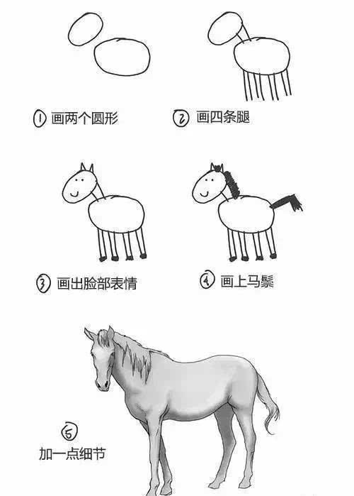 和人像一样,学会画动物头像后,大家再开始练习躯干部分.