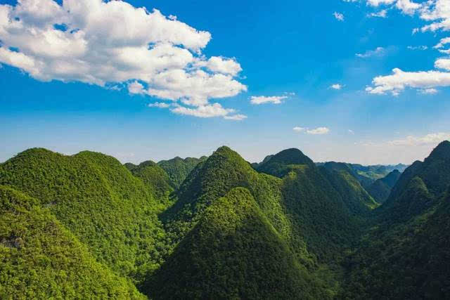 目标:石上森林!你早就该来一次这样洗心润肺的旅行!图片