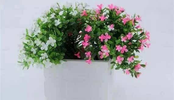 壁纸 仿真 仿真花 仿真植物 花 花束 鲜花 装饰 桌面 571_329