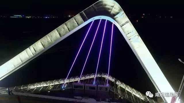 """桥梁结构设计以被称为""""吉祥之鸟""""的陕西省""""省鸟""""朱鹮在飞翔的姿态进行"""