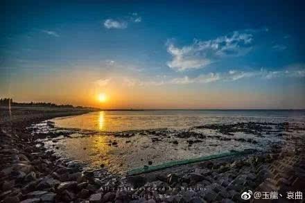 此身此时此地,9个网友与崇明横沙岛 未完待续的故事.
