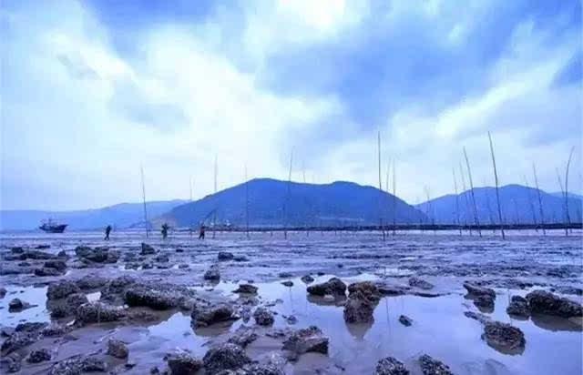 霞光与大海共鸣的地方-霞浦四礵列岛,闾峡金海银滩,浮