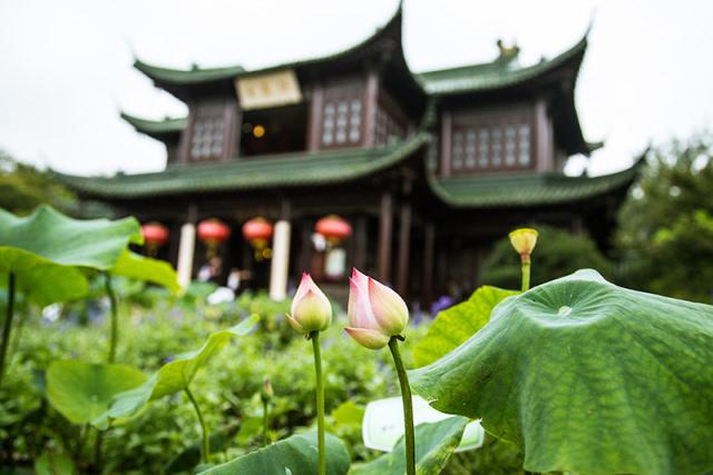 【蜀冈-瘦西湖风景名胜区7月旅游新闻发布会圆满成功】