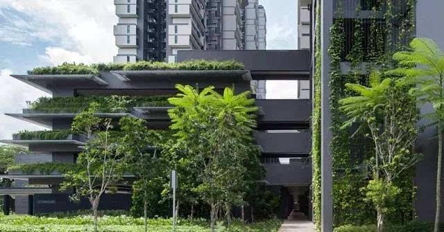 【deld分享】新加坡杜生阁组屋住宅景观设计图片
