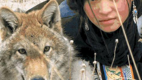 重返狼群:一部人与狼的格林童话,分分钟让你泪奔!图片