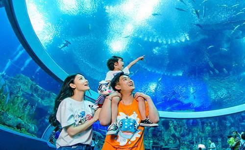 广州长隆野生动物园 珠海海洋王国,一次玩够双长隆!