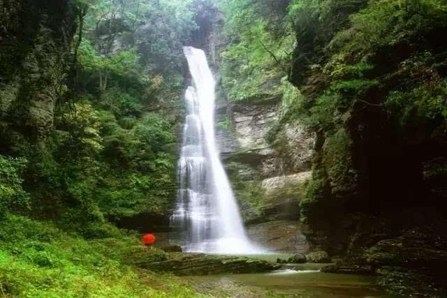 地址:四川雅安市碧峰峡风景区 路线:德阳—成都—雅安—碧峰峡风景区