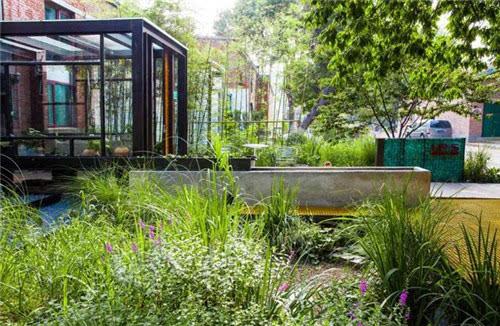 经典案例,构建雨水花园可持续生态的迷人景观图片