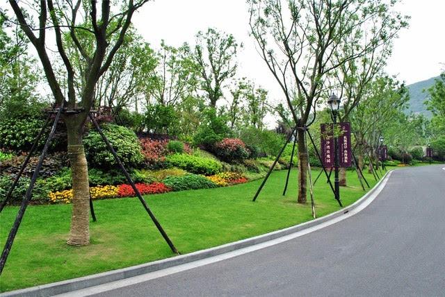 干货| 园林景观设计中植物配置原则