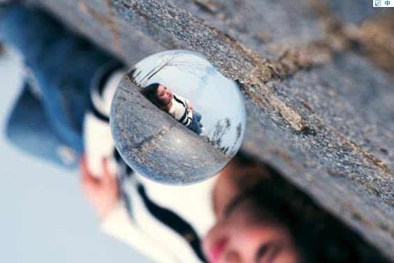 水晶球不仅可以用来拍照,还可以当道具用啊 不仅摄影师喜欢,连小动物