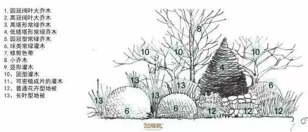 植物组合图简笔画