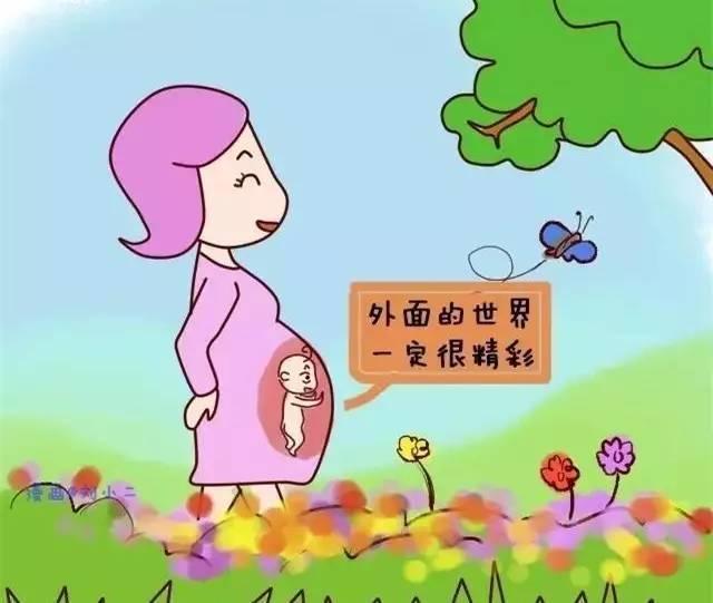 怀胎十月,胎宝宝在妈妈肚子里的生活,居然如此丰富!图片