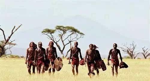 """【狂野】震撼眼球!观看动物大迁徙,肯尼亚""""非洲五霸""""齐亮相!"""
