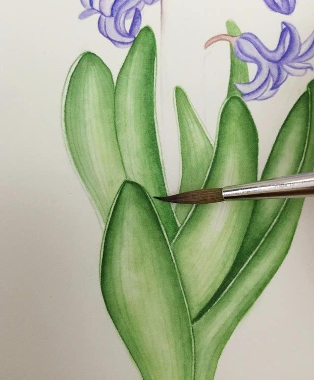 手绘插画教程 | 如何控制好水彩的水份之毛笔篇