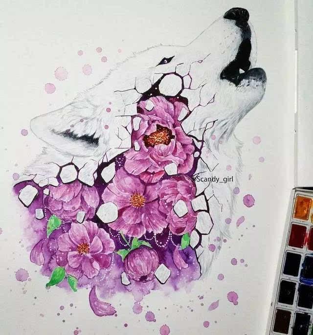 来自芬兰23岁女孩 她创作了一系列 保护动物的水彩画 画面场景很唯美