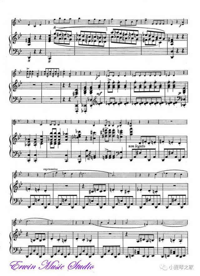 《骷髅之舞》附小提琴谱-圣桑曲,杜达梅尔指挥