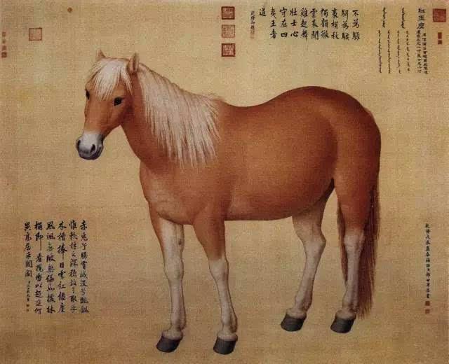 唐 韩幹《照夜白图》 马,在中国古代一直是民族生命力的代表和强盛富有的象征。古代神话传说中有很多关于千里马、神马、天马的记载。 我国画马史上名家辈出,他们或注意实际观察,将马的种种形态精确地描绘出来;或不满足于形似,力求画出马的精神,以达到以马抒怀、以马寄情的目的。无论重写实还是通过画马来画人,古代画家都达到了极高的水平,使画马这门艺术表现出真正的中国气派。下面我们就一起来走进名家画马的世界: 韩幹  唐 韩幹《相马图》 韩幹,唐代中期画家,喜好丹青艺事,尤好画马。他出身贫寒,少时曾为酒家送酒。有一次,