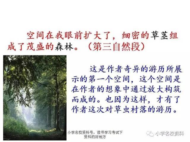 人教版小学语文六上第三课《 草虫的村落 》 课文 朗读 讲解 课件