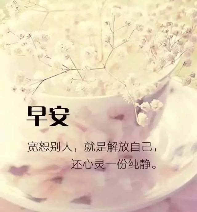 早安图片大全-搞笑频道-手机搜狐