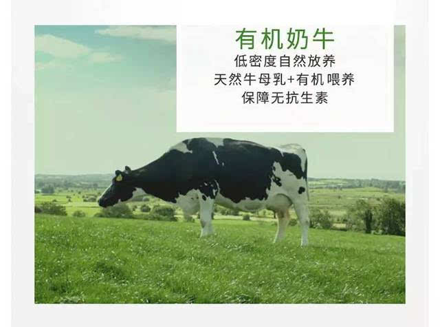 催乳剂性虐待性奴小�_奶牛生活 天然放养,有机牧草,绝不使用激素,催乳剂,自然产奶,科学