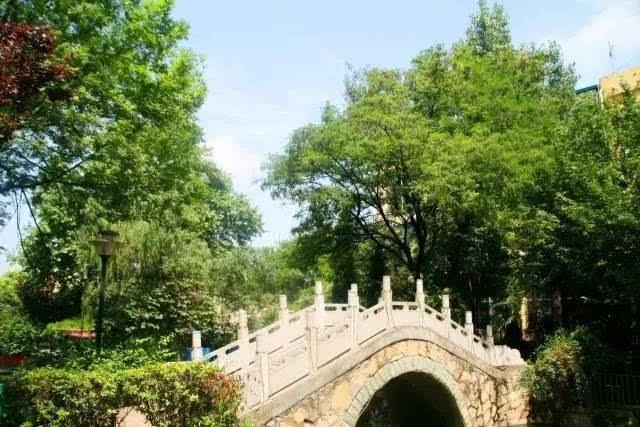 还有坐落于翠竹绿树之间的独栋别墅小院,私密宁静,清凉宜人,并有私属