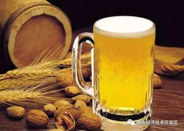 【涨知识】生啤,鲜啤,纯生,原浆.哈遍啤酒的青岛