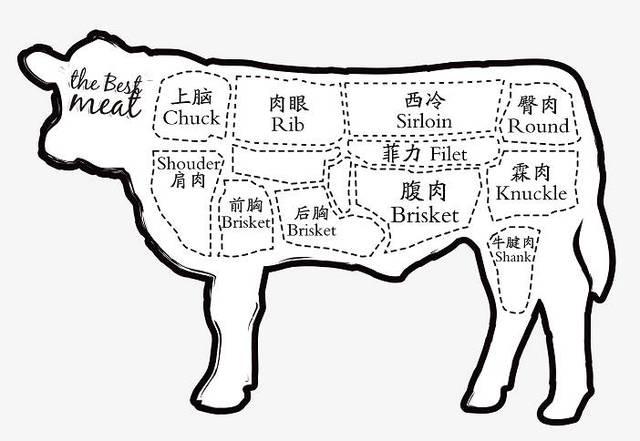 牛肉 手绘图片素材