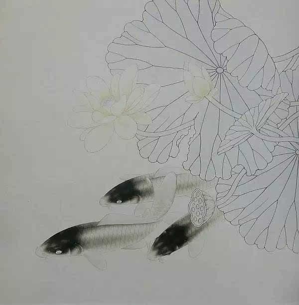 路雨年工笔《荷花鲤鱼》步骤画法