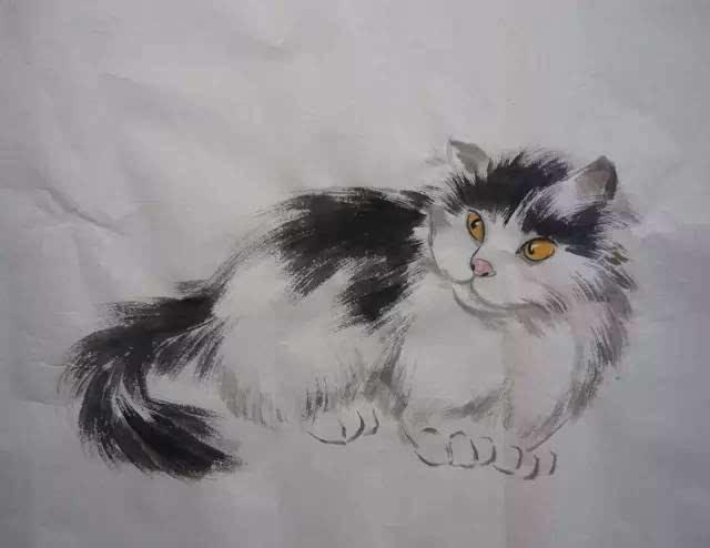 【国画教学】猫的画法