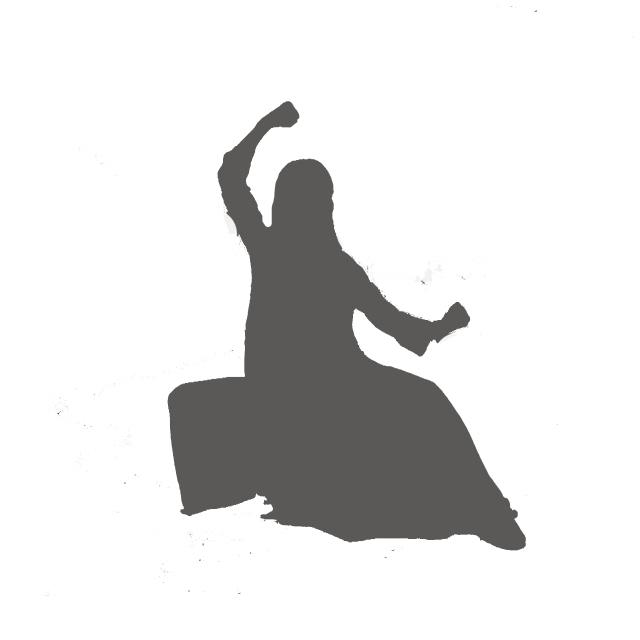 预告|太极pose速成班第四讲—雀地龙图片