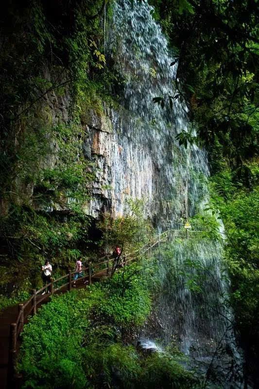 雅安荥经龙苍沟森林公园徒步行摄一日游