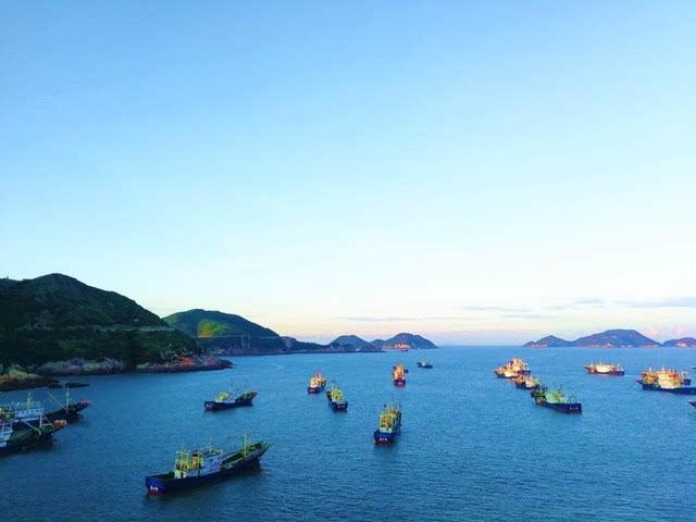 【青新闻】温岭19家民宿成立石塘半岛旅游民宿联盟,你