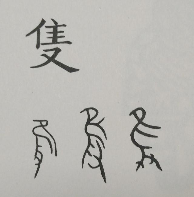 汉字王国(四)| 动物们的汉字演变之路-文化频道-手机