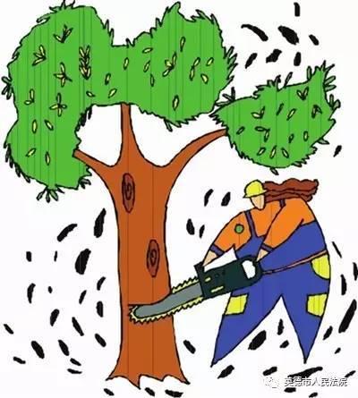 【以案说法】一男子盗伐林木38株 获刑7个月