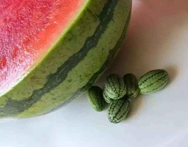 世界上最小的西瓜,比葡萄还小,萌化了,给我来一筐!图片