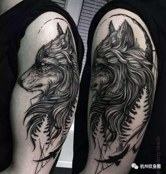 tattoo   纹身素材:狼图片