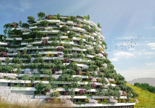 """我国将建""""森林城市"""",空气终于有救了!-社会频道-手机图片"""