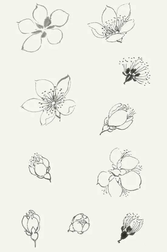 简笔画 设计 矢量 矢量图 手绘 素材 线稿 550_828 竖版 竖屏