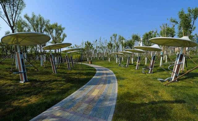 △東麗湖生態體育公園圖片
