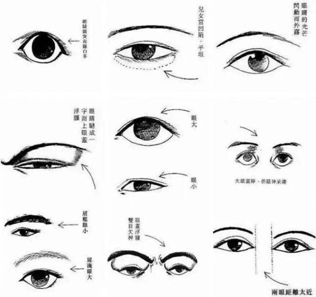 眼型分类图解相学