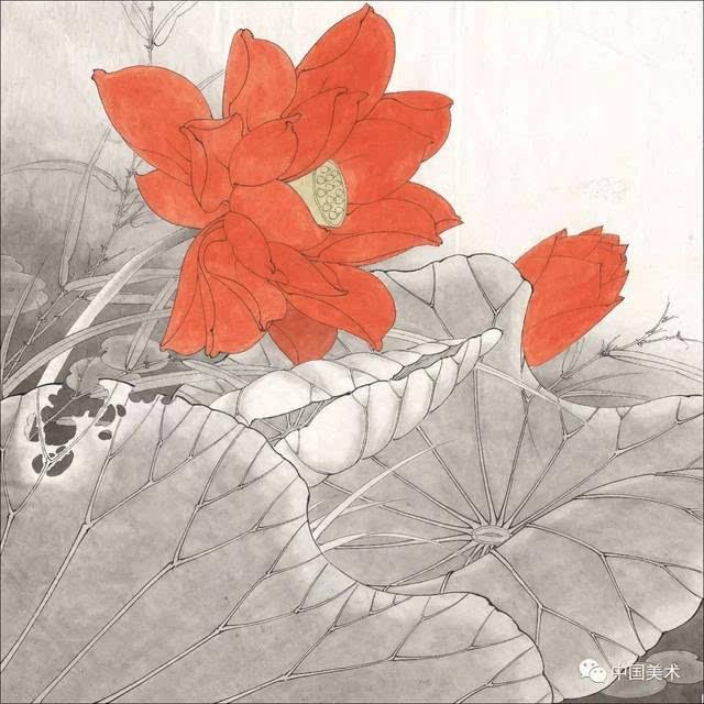 五种工笔莲花的绘画着色步骤详解!